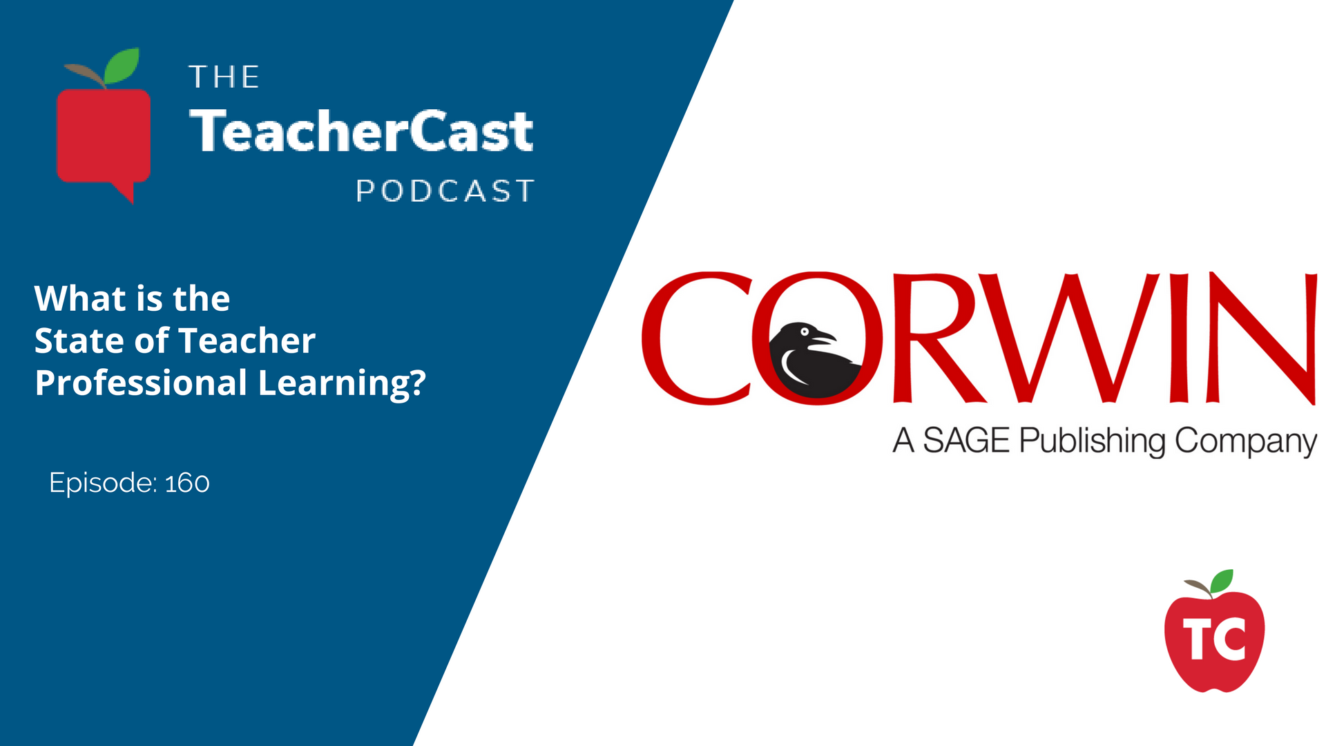 The State of Teacher Professional Learning