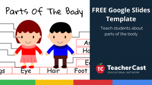 Parts of the Body Template