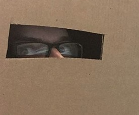 side eye from inside a cardboard box